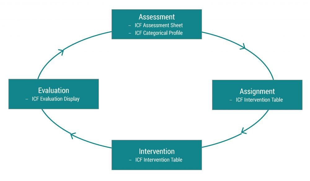 The Rehab-Cycle®® and the corresponding ICF-based documentation tools
